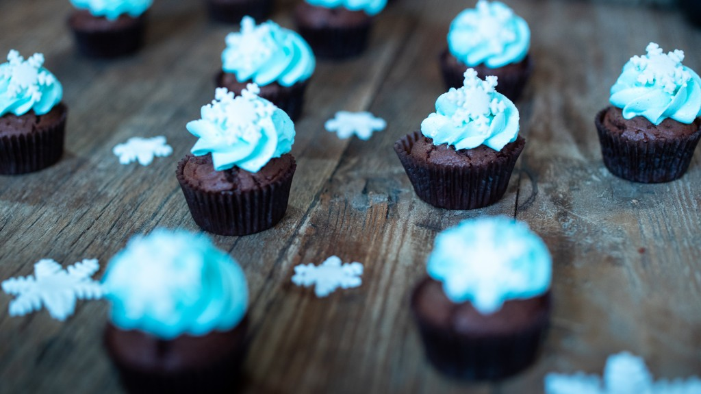 cupcakes_superprof-05061