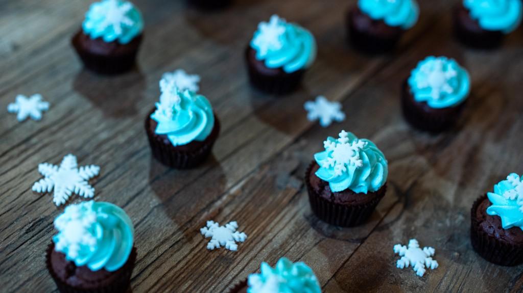 cupcakes_superprof-05064