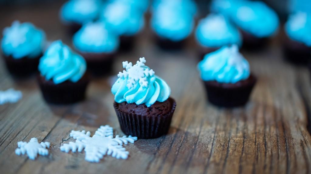 cupcakes_superprof-05071