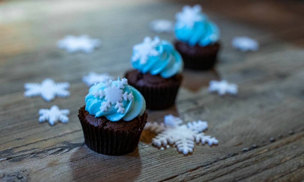 cupcakes_superprof-05076