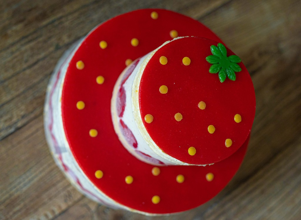 fraisiersaout-06924
